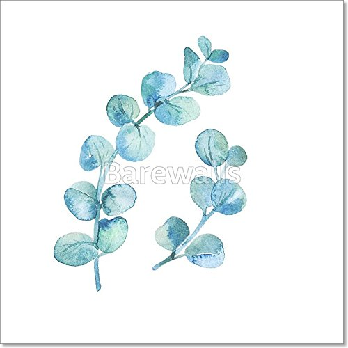Watercolor Eucalyptus Leaves And Branches. Paper Print Wall Art (8in. x 8in.) Barewalls Leaf