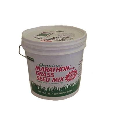 Southland Sod 28 Marathon III Grass Seed Mix, 5 Pounds : Garden & Outdoor