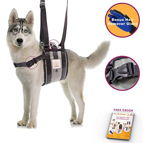 Veterinarian Approved Dog Support Harness + Hair Remover Glove - Dogs Sling Lift for Paralyzed Legs - Adjustable Straps - Mobility Rehabilitation for Injured Arthritis Elderly Disabled - XL breed