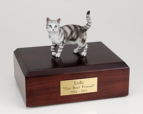 Ever My Pet Shorthair Figurine product image