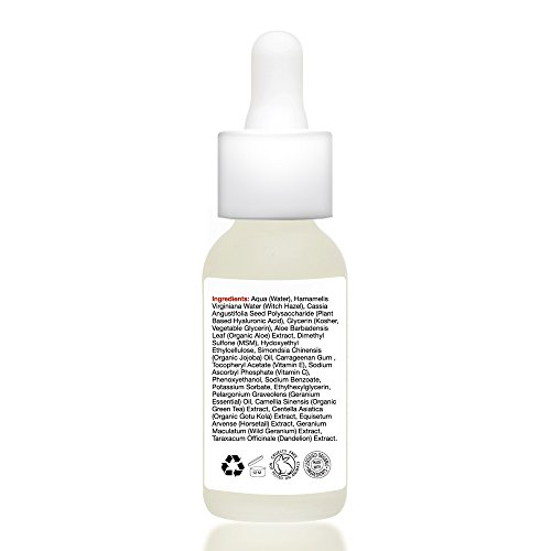 AGELESS HYALURONIC SERUM by nieuw beauty. Anti-Aging & Hydrating Serum for Women and Men. Botanically derived Hyaluronic Acid. Non-greasy with instant hydration and plumping. All Skin Types (1 oz)