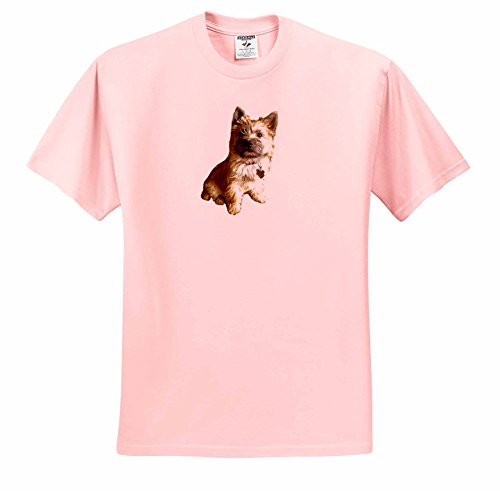 Cairn Toto Terrier - Scenes from the Past Ephemera - The Cutest Cairn Terrier in the World Cuter than Toto Wizard of Oz - T-Shirts - Adult Light-Pink-T-Shirt Large (ts_244031_36)