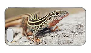Customized iphone 5S discount case Lizard close up PC Transparent for Apple iPhone 5/5S