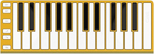 CME Xkey 25-Key MIDI Portable Mobile Musical Keyboard - Gold by CME