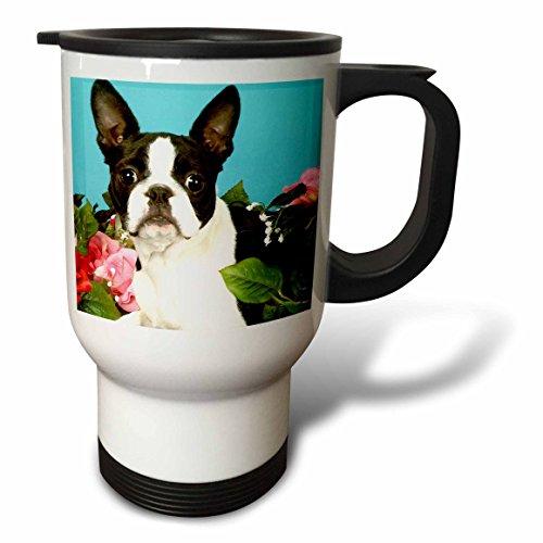 3dRose Emma Boston Terrier Travel Mug, 14-Ounce, Stainless Steel