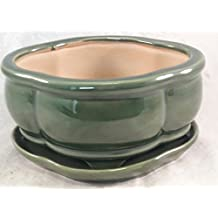 Bonsai Tree Pot creative design green 6 Inch Bonsai Pots with Trays- unique from Jmbamboo