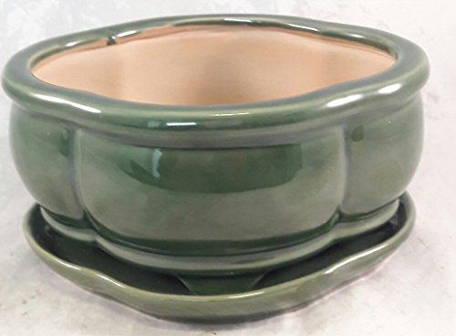 Bonsai Tree Pot creative design green 6 Inch Bonsai Pots with Trays- unique from ()