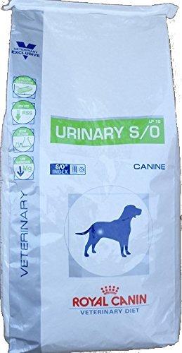 Royal Canin C-11155 Diet Urinary S/O Lp18 - 2 Kg: Amazon.es: Productos para mascotas