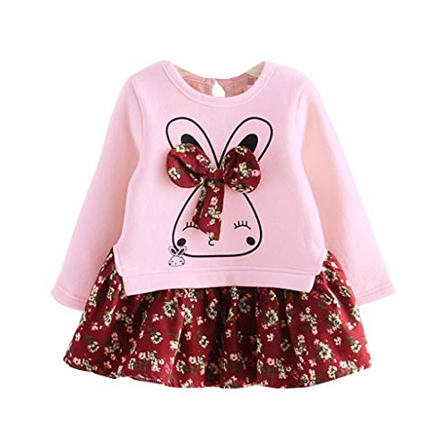 (ANJUNIE Toddler Kids Baby Girl Cartoon Rabbit Bunny Floral Princess Party Dress Clothes(1-Pink,9))