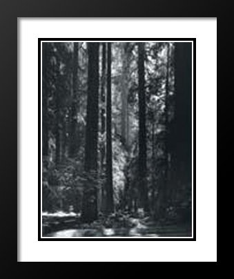Ansel Adams Framed and Double Matted 25x29