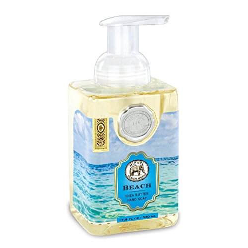 Michel Design Works Foaming Hand Soap, 17.8-Ounce, Beach (Print Meyers Floral)