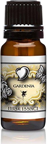 gardenia-premium-grade-fragrance-oils-10ml-scented-oil