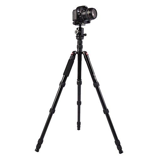 大勧め KANEED カメラアクセサリー Black) Triopo Triopo MT-2805C (色 Canon Nikon SonyDSLRカメラ用NB-2Sボールヘッド付き調節可能なポータブルアルミ三脚 三脚、一脚 (色 : Black) Black B07PK9BYPV, NaturalBodyMaking:84ef16cd --- martinemoeykens.com