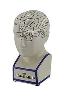 Phrenology Head Bank - The Human Mind