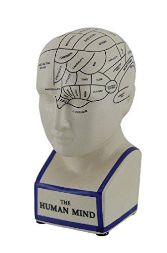 Phrenology Head Bank - The Human Mind Head Bust Sculpture