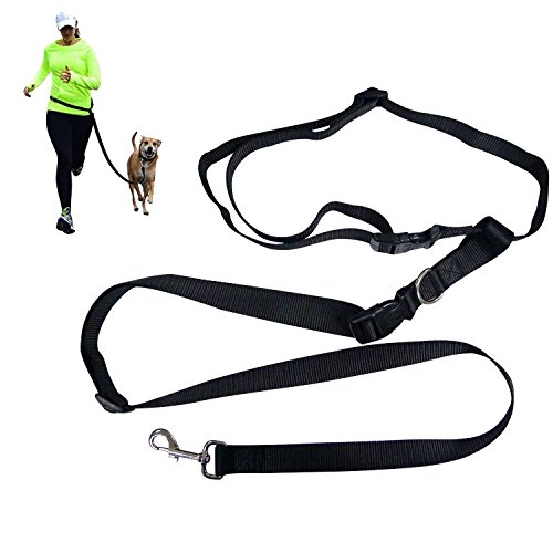 BIBO Exerciser Premium Durable Nylon Safety Hiking Running Jogging Walking Dog Hands Free Leash For Large, Medium and Small Dogs (Black)