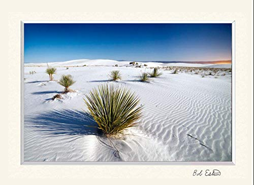 (11 x 14 inch mat including photograph of desert sand dune landscape at White Sands National Monument, New Mexico night sky photograph under stars.)