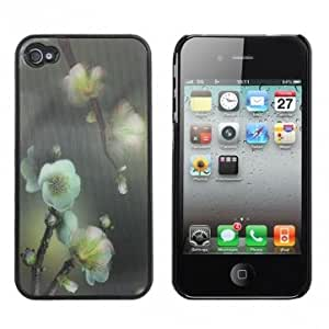 3D Wintersweet Flowers Pattern Hard Case Cover For iPhone 4
