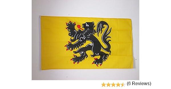AZ FLAG Bandera de FLANDES 90x60cm - Bandera Flamenca - BÉLGICA 60 x 90 cm: Amazon.es: Jardín