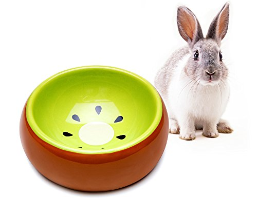 (Mkono No-Tip Ceramic Rabbit Food Bowl Feeder for Guinea Pig Hamster Chinchilla, Kiwi)