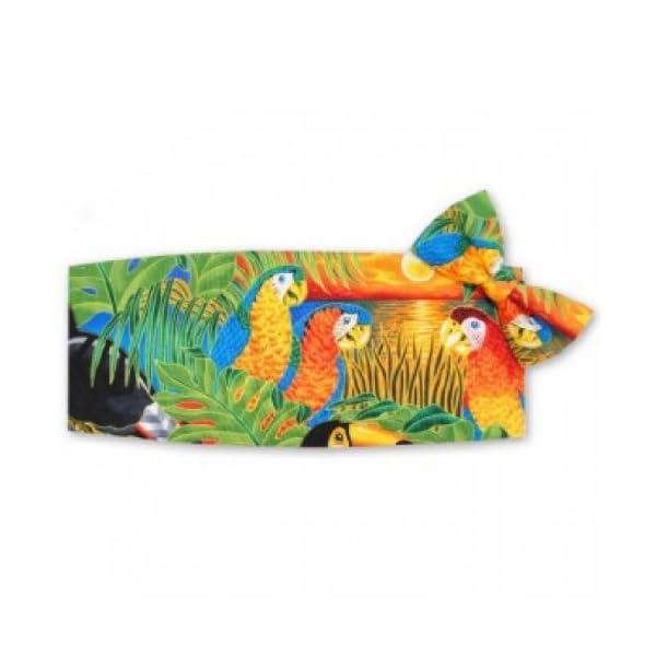 Parrots-in-Paradise-Tuxedo-Cummerbund-and-Bow-Tie