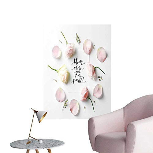 - SeptSonne Vinyl Wall Stickers Quote Bloom Where You are Plate Written on Paper Perfectly Decorated,16