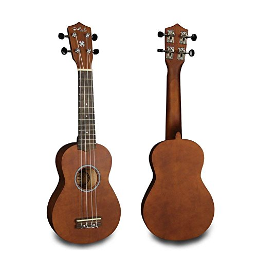 Bailando 21 Inch Handmade Wooden Soprano Ukulele Beginner Kit (Brown)