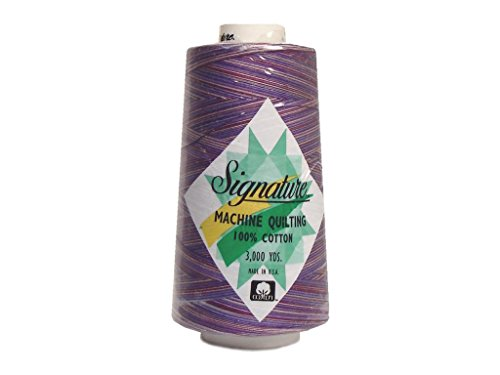 Signature 3 Ply Cotton Quilting Thread, 40wt/3000 yd, Variegated Purple Haze (Variegated Thread Signature Quilting)