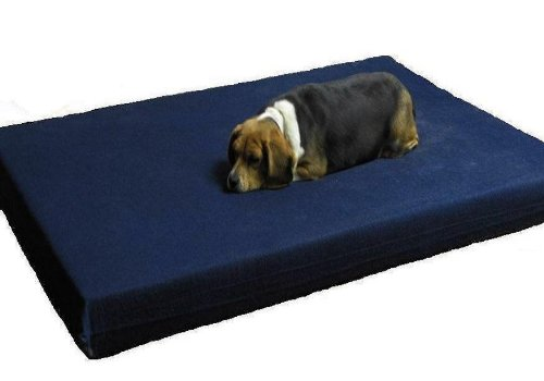 55″X37″4″ XXL Extra Large 100% Orthopedic Grade Full Memory Foam Pad Pet Bed for Big Dog with durable denim cover + Waterproof internal case, My Pet Supplies