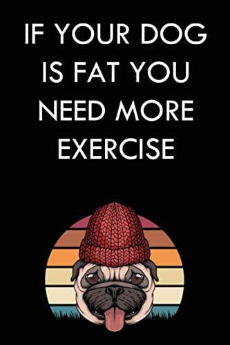 IF YOUR DOG IS FAT YOU NEED MORE EXERCISE: 6x9