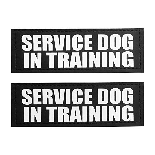 Picture of FAYOGOO Reflective Service Dog in Training Patches with Hook Backing for Service Dog Vests/Harnesses. L, 6