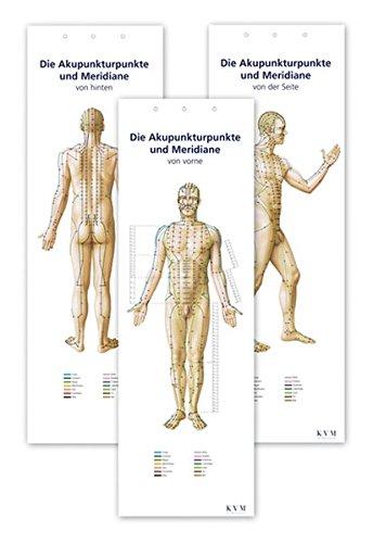 Akupunktur-Poster-Set: Darstellung sämtlicher Akupunkturpunkte von vorne/hinten/seitlich