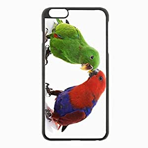 iPhone 6 Plus Black Hardshell Case 5.5inch - couple parrots male female background Desin Images Protector Back Cover by mcsharks