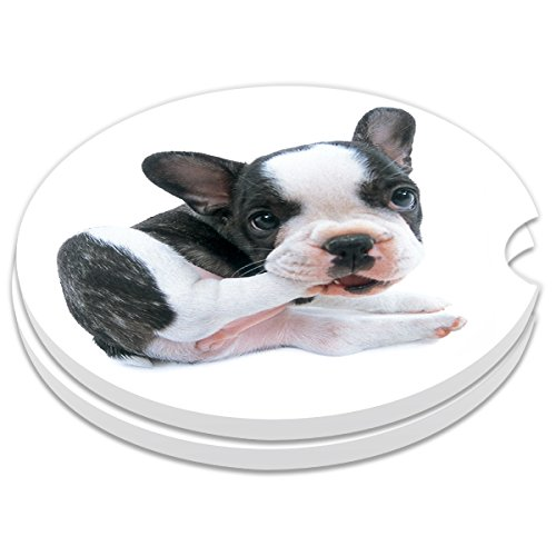 Car Coasters Pack of 2, Small 2.56 Stone Car Cupholder Absorbent Coaster Set for Women Men Drink Cup Holder Coasters (Cute Dog)