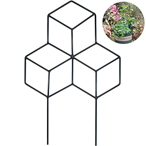 Creation Core 1Pcs Iron Lattice-Shaped DIY Garden Pot Climbing Trellis Plant Support Stakes Flower Supports by Creation Core