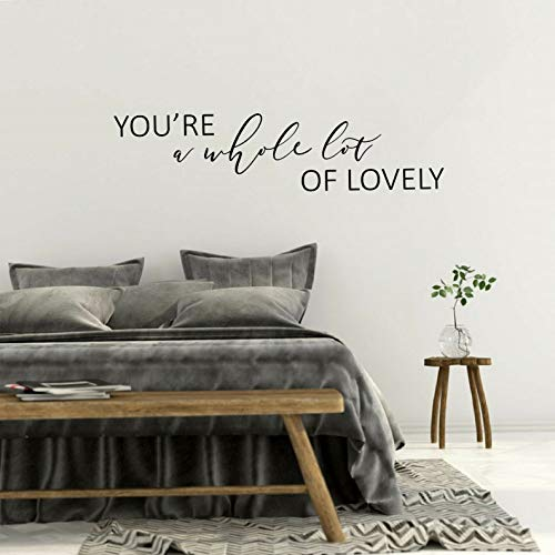 Waldenn Youre A Whole LOT of Lovely Quote Home Wall Art Decal Words Lettering Decor   Model DCR - 1944
