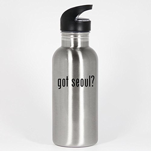 got-seoul-20oz-silver-stainless-steel-water-bottle