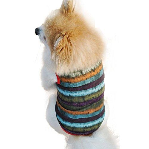 DZT1968(TM)Multi Color Stripe Pet Dog/Cat Vest T-Shirt (S) Review