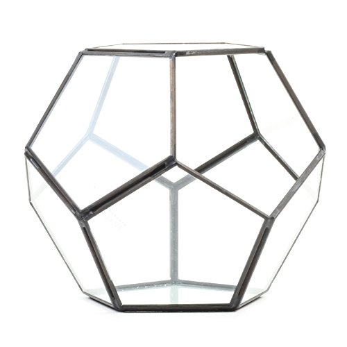 Koyal Wholesale Geometric Terrarium Glass Table Decoration, Planter for Succulents, Cactus, Air Plants, Indoor Plants, Outdoor Plants (Pentagon, Black)