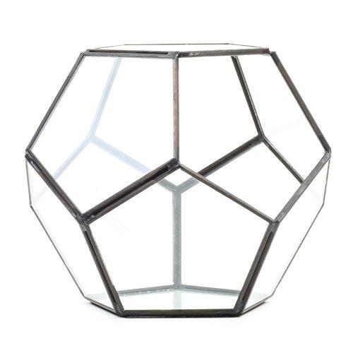 Koyal Wholesale Geometric Terrarium Glass Table Decoration, Planter for Succulents, Cactus, Air Plants, Indoor Plants, Outdoor Plants (Pentagon, - Geometric Pentagon