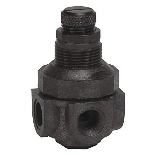 Watts 0354590 P60M1-4-0-25 1/4 Inch MInchiature Plastic Water Pressure Regulator, Npt Female, Acetal Plug, 0-25 psi, Gauge Port/90Degree Inchlet To Outlet