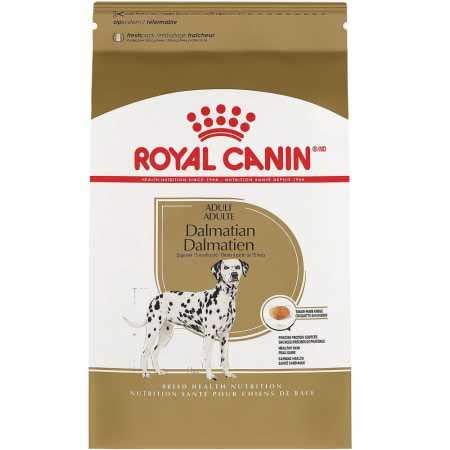 Royal Canin Adult Jack Russell Terrier Dry Dog Food (10 lb)