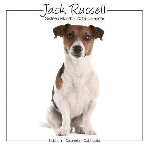 Jack Russell Calendar - Jack Russell Terrier Calendar - Dog Breed Calendars - Calendars 2018 - 2019 Wall Calendars - 16 Month Wall Calendar by Avonside Studio