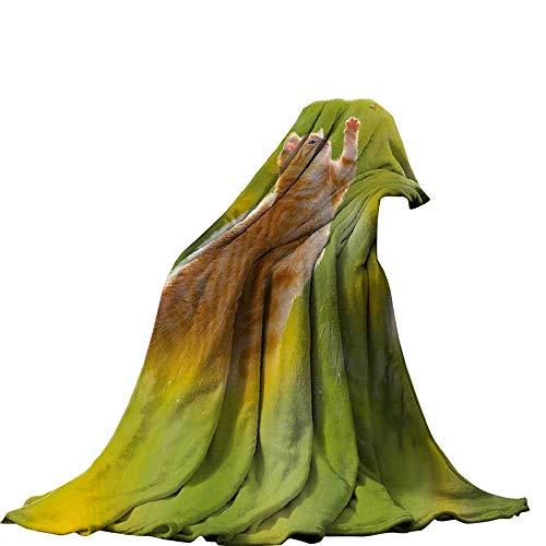 QINYAN-Home Manta de Felpa (50 x 30 cm), diseño de Gatos Coloridos en Diferentes Poses, Color04, 70'x60', 1