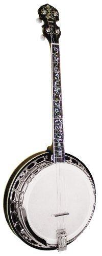 Gold Tone Tenor TS-250AT Tone Tenor Special Archtop Tenor Banjo Banjo (Vintage Brown) [並行輸入品] B07MKX1HZ1, 静岡燻製工房わびさび:4d9e4565 --- kapapa.site