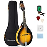 Donner A Style Mandolin Instrument