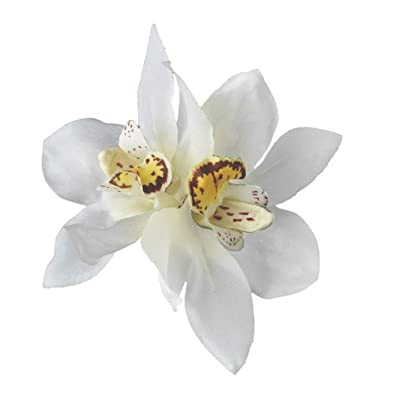 Amazon real touch white orchid wedding hair flower clip jewelry real touch white orchid wedding hair flower clip mightylinksfo