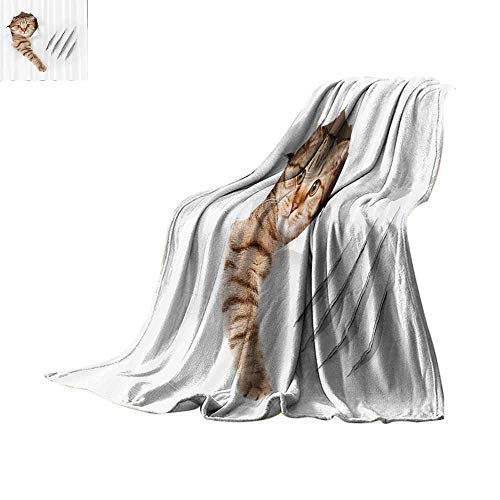 Custom Detox - Custom homelife Throw Blanket Animal,Funny Cat in Wallpaper Hole with Claw Scratches Playful Kitten Cute Pet Picture,Brown White Warm Blanket Bed or Couch 62