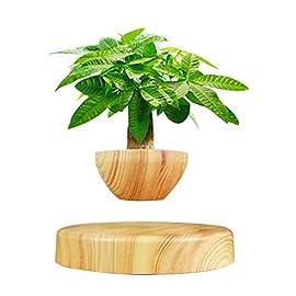 Creative Magnetic Levitating Air Bonsai Pot