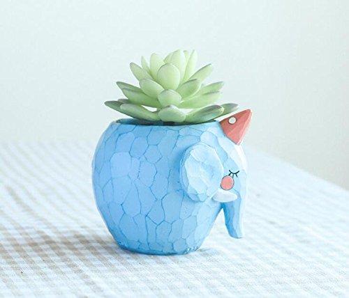 Cuteforyou Animal Cartoon Decoration Succulent product image
